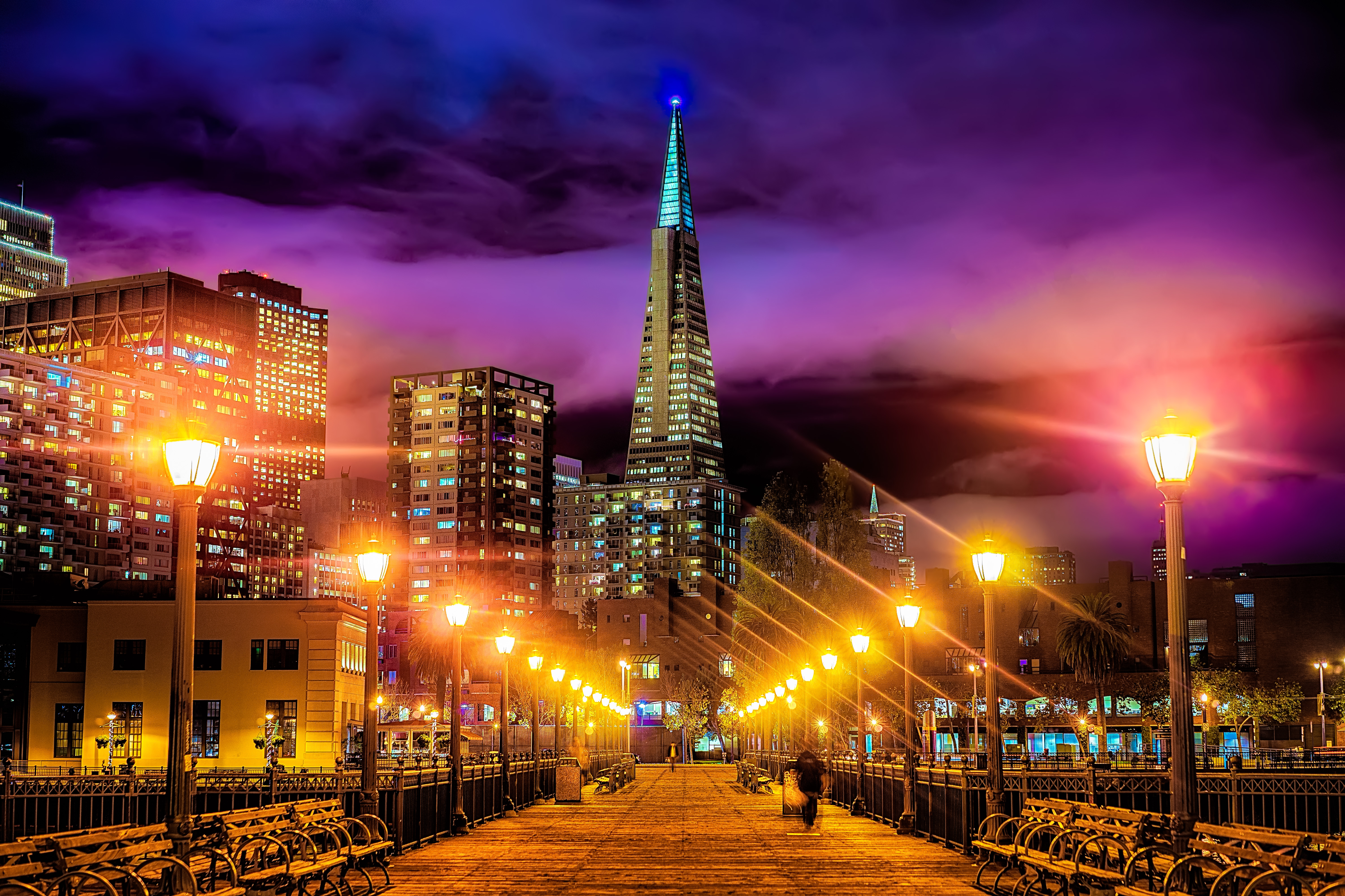 The Transamerica Pyramid is the tallest skyscraper in the San Francisco skyline.