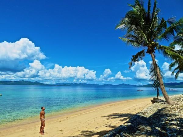 Seb palm trees Flower Island Palawan, the Philippines