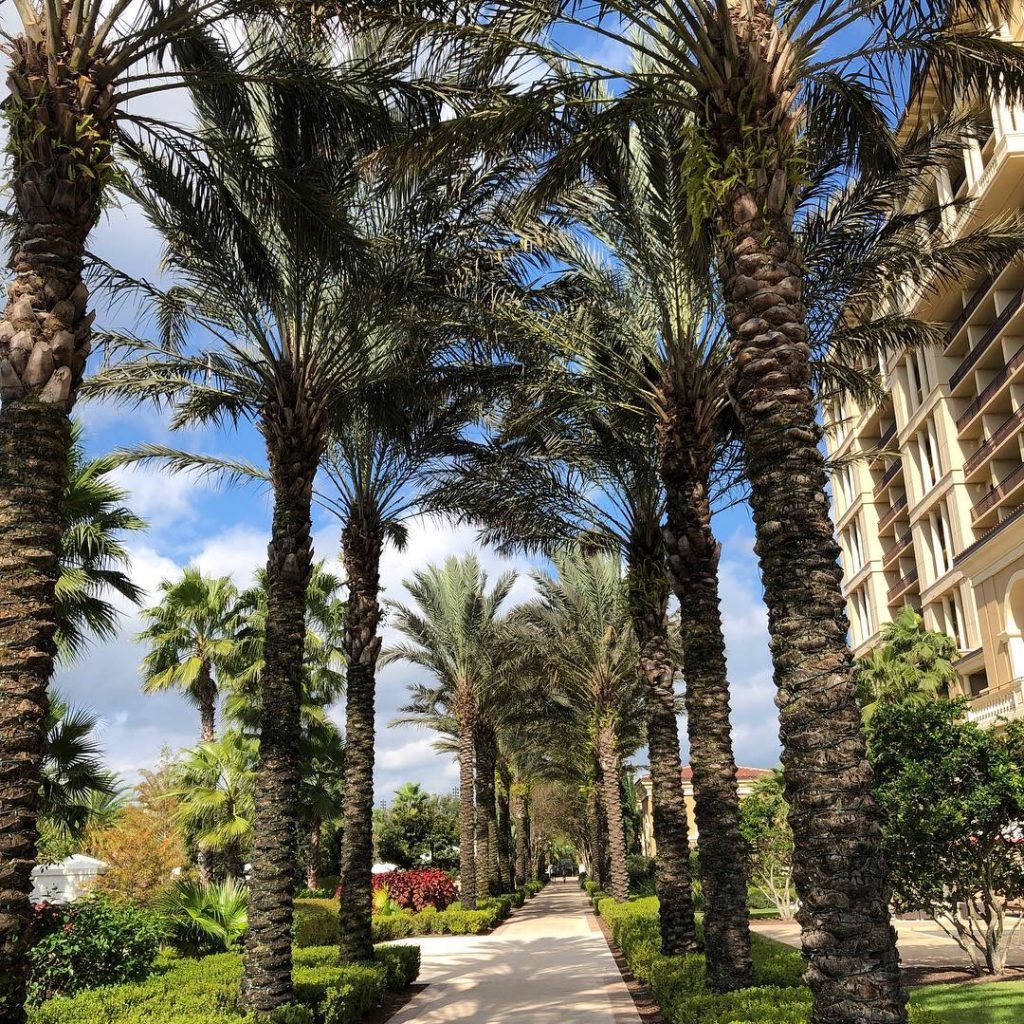 Four Seasons Orlando in ManAboutWorld gay travel magzine